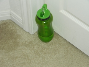 For some reason, Little Man doesn't like his water bottle in the room with him when he sleeps. AT nap time, he got up, put his water bottle outside the door and went back in to nap.
