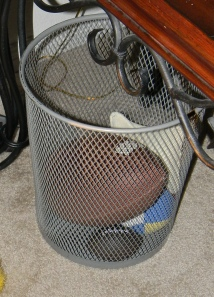 I use a wire trashcan to hold the various balls and a beanbag. If nothing else, it makes a natural target for throwing.